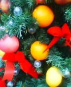 本日のクリスマスまとめ